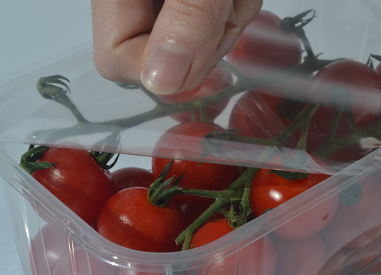 Tomatoes sealed by a polyester film